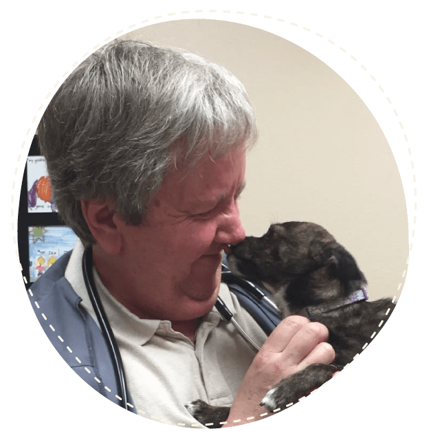 Puppy kissing man's face